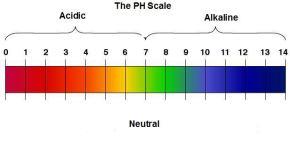 PH alcalino y elcáncer