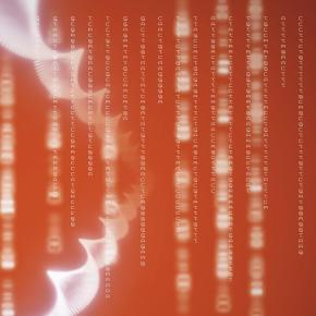El ADN no es destino: la epigenética y el campo dinámico delser