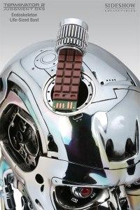 Terminator skullchip