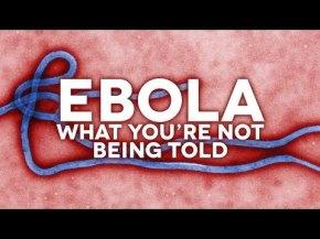 Actualizaciones sobre elébola